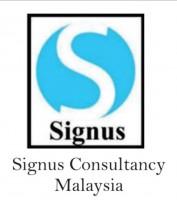 Signus Consultancy